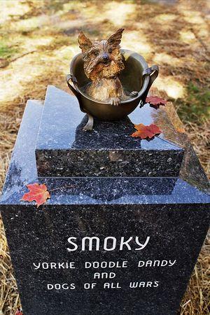 Smokey-2 2008.jpg