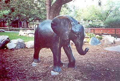 01075 Baby Elephant.jpg