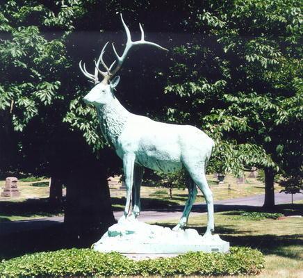 00238 Elk.jpg