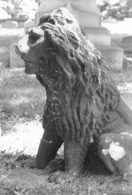00075 Lion.jpg