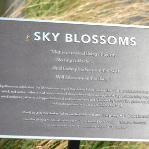 Sky Blossoms Plaque.JPG